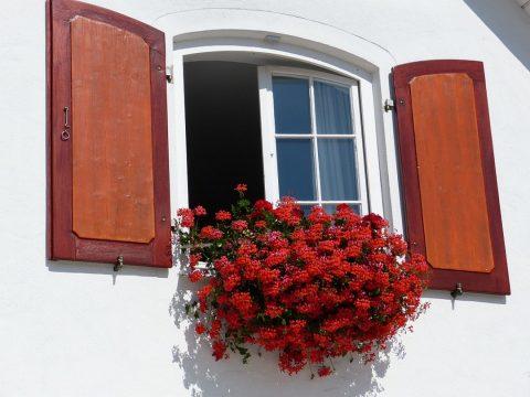 La qualité de fabrication de fenêtres chez un ébéniste